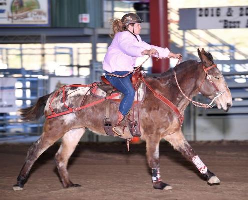 Kayla Riding Flynn the Mule Barrel Racing