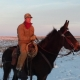 Mule and rider in the snow