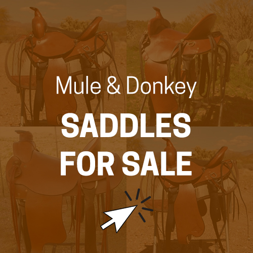 saddles for sale ad banner